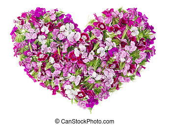 Pink floral lovely girl heart concept