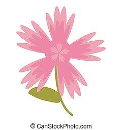pink flower natural image