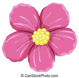 Pink flower on white background