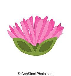 pink flower spring image