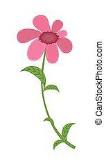 Beautiful Decorative Pink Festive Flower Vector Illustration