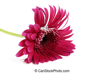 Pink Flower with Ring