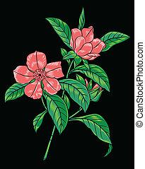 pink flowering branch
