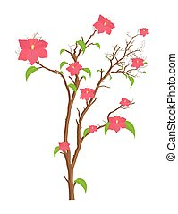 Pink Flowers Branches Vector