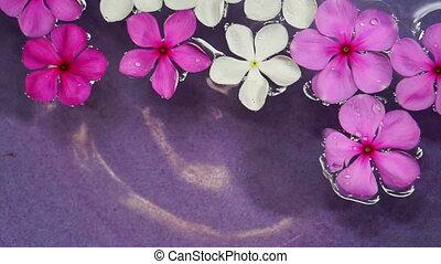 pink flowers floating spa water