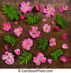Pink flowers on dark rustic wooden background.