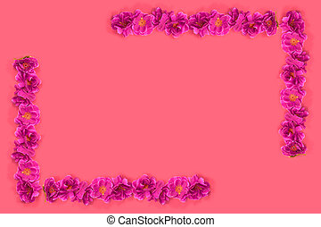Pink flowers on red background.