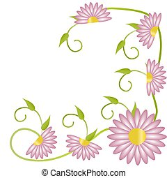 Pink flowers on white background with copy space.