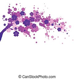 pink flowers tree ,isolated  on a white