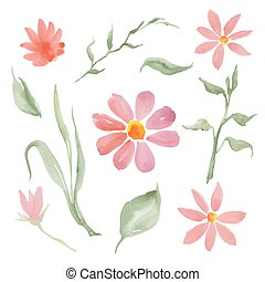 pink flowers - watercolor floral set isolated on white...
