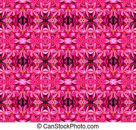 Pink frangipani flower seamless pattern background