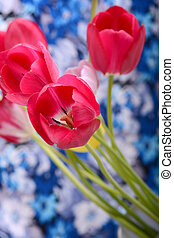 Pink fresh tulips flowers on original background