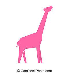 Pink giraffe isolated on white