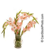 pink gladioli in a vase