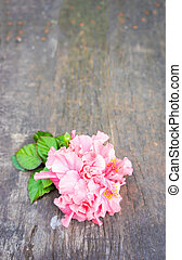 Pink hibiscus flower with leaves on wood background.