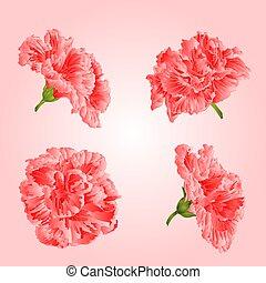Pink hibiscus flowers vector.eps