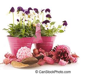 pink in springtime