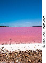 Pink Lake Outback Australia