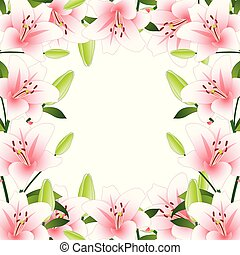 Pink Lily Border on White Background2