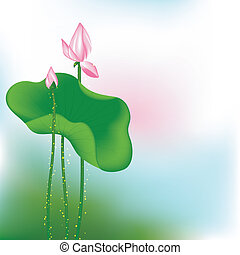 Pink Lotus Flower on Green Background