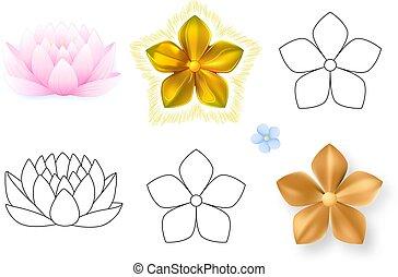 Pink lotus, forget-me-not pattern flower set
