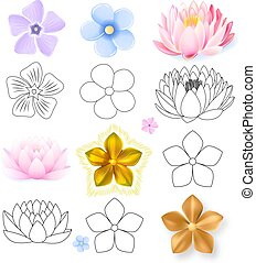 Pink lotus, periwinkle, forget-me-not pattern flower set...