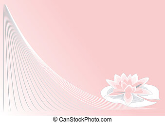 pink lotus on pink background with a spiral