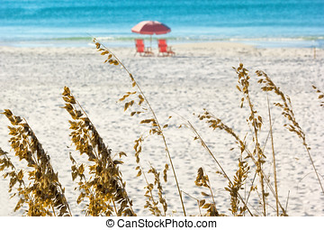 Pink Lounge Chairs - Pink umbrella and lounge chairs on the...