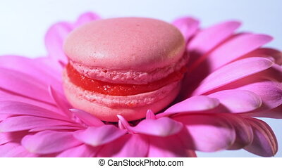 Pink macaroon - delicious and beautiful french dessert...