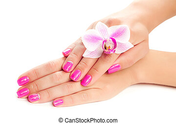 pink manicure with orchid flower. isolated