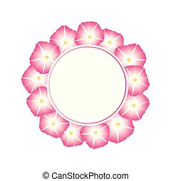Pink Morning Glory Flower Banner Wreath. Vector...