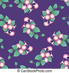 Pink Morning Glory on Purple Background. Vector...