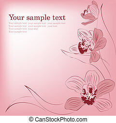 Pink orchid flowers. Vector greeting card.