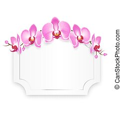 Pink Orchid Flowers with Celebration Frame Isolated on White