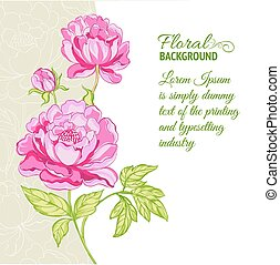 Pink peonies background with sample text. Vector...