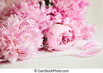 Pink peony flowers on wood surface - Beautiful pink peony ...