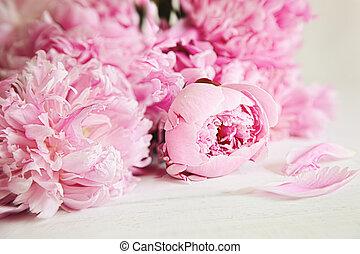 Beautiful pink peony flowers on wood surface