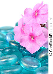 Pink Phlox Flowers with Blue Glass Stones Close-Up