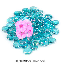Pink Phlox Flowers with Blue Glass Stones Isolated on White Background
