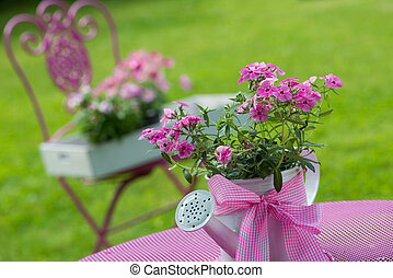 Pink phlox in a watering can on a garden table