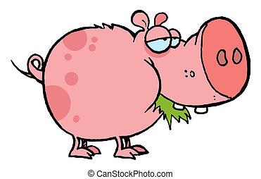 Pink Pig Munching On Grass