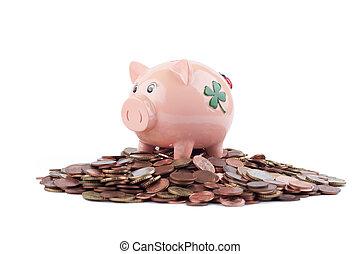 Piggy Bank Standing On Coins