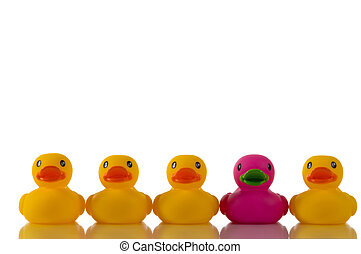 Pink or purplish rubber duck in a row with yellow rubber ducks on white background, illustration of standing out from the crowe, dare to be different