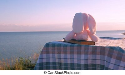 Pink rabbit sitting on vintage book and looking on sea lanscape. Friendship , loneliness concept. Cute hare kids soft toy left alone. Charity donations.