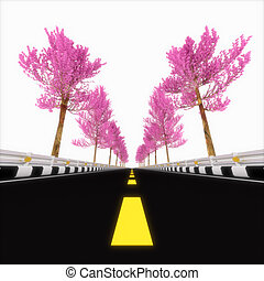 Pink road.