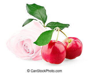 Pink rose and two red mini apples with leaf