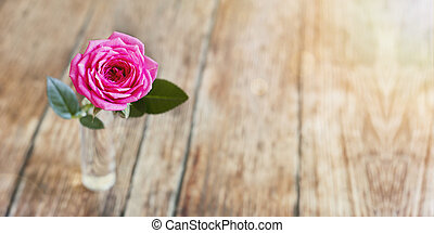 Pink rose banner of life coaching concept
