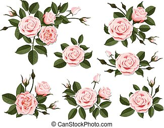 Pink rose boutonniere set - Pink rose boutonniere. Set for...