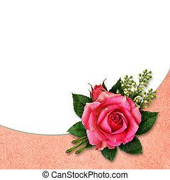 Pink rose flower arangement for background