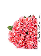 pink rose flower bouquet on white background